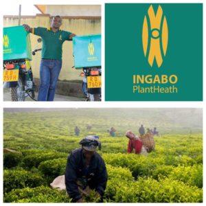 Ingabo Rwanda