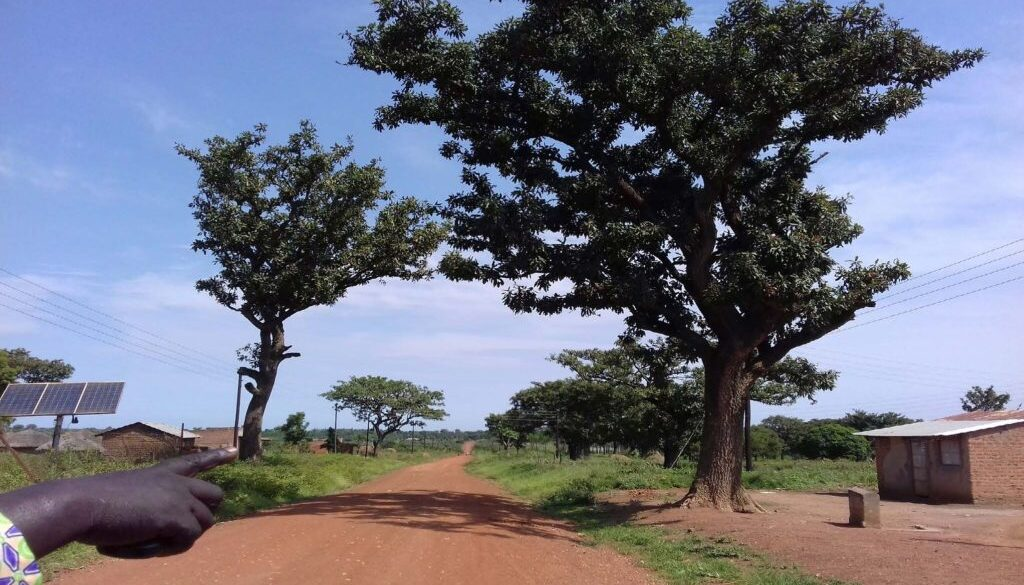 Achieving Sustaianble Development through Shea Trade (1)